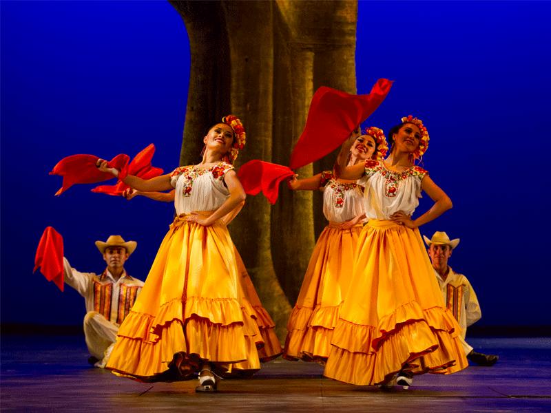 galeria-ballet-amarillas-1