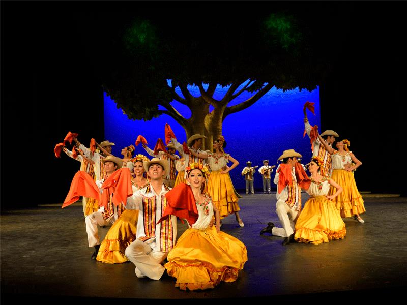 galeria-ballet-amarillas-2