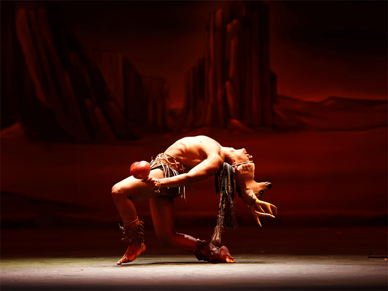 galeria-ballet-cazador-1