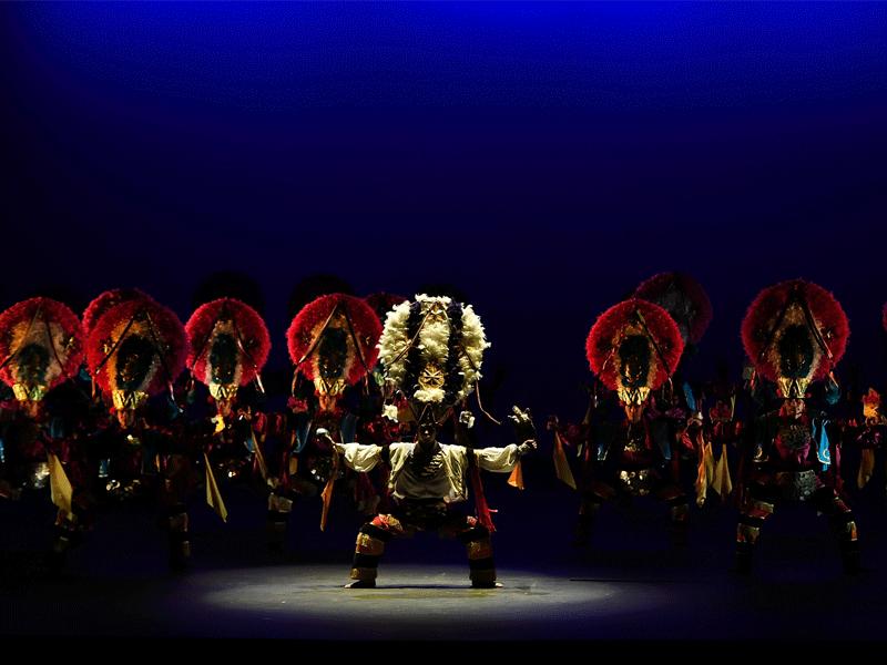 galeria-ballet-pluma-1