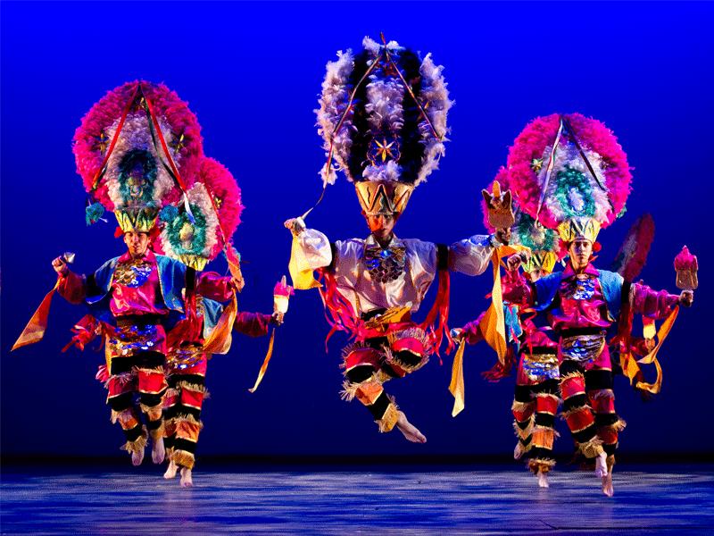 galeria-ballet-pluma-2